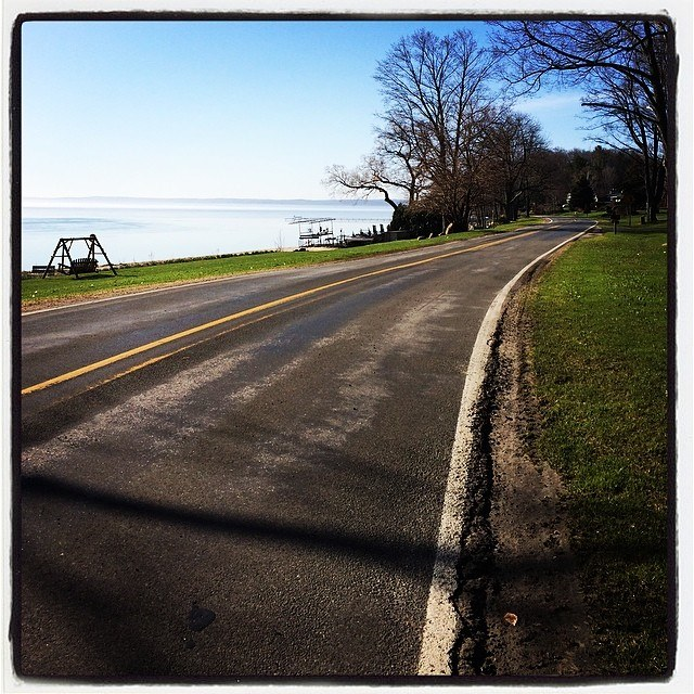 Eastshore Drive: one of the many beautiful stretches of the Bayshore Marathon and Half Marathon routes.