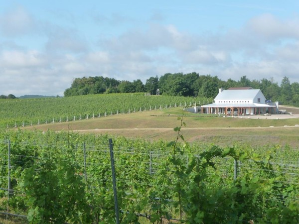 The Vineyard to Bay, set for Aug. 23, includes a full 25K, 2-person 15K/10K relay, and 5K run/walk. It starts at Brengman Brothers at Crain Hill Vineyards and ends in the quaint coastal town of Suttons Bay.