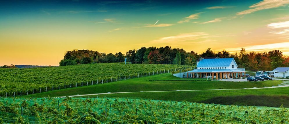 The third annual Vineyard to Bay 25K, 15K/10K relay and 5K run/walk takes place Sunday, Aug. 28 on the Leelanau Peninsula. The 25K and relay starts at this winery, Brengman Brothers. /Photo courtesy Vineyard to Bay.